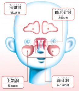 (副鼻腔炎を知るQ&A)