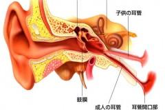 (社)松阪地区医師会