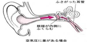 メルクマニュアル医学百科
